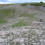 Nicho de nivacion cerro cavero