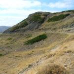 Cerro cavero