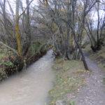 rio camarena 2